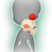 Preview - Moogle Doll (Female).png